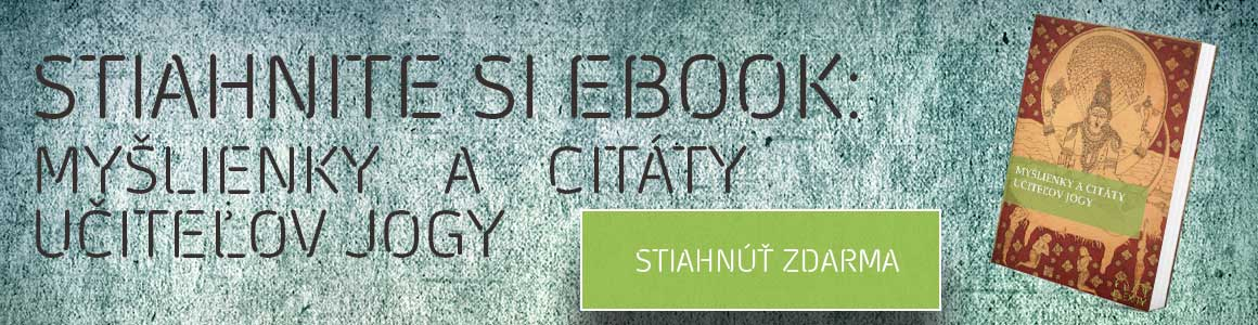 STIAHNITE-SI-EBOOK-BANNER-CITATY-FLEXITY